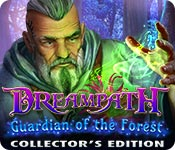 Dreampath 3: Guardian of the Forest Collector's Edition [FINAL]