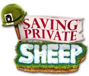 Saving Private Sheep