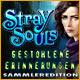 Stray Souls: Gestohlene Erinnerungen Sammleredition