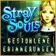 Stray Souls: Gestohlene Erinnerungen