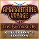 Amaranthine Voyage: The Burning Sky Collector's Edition game
