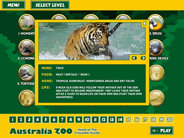 Image of: Vector Game System Requirements Big Fish Games Australia Zoo Quest u003e Ipad Iphone Android Mac Pc Game Big Fish