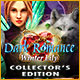 Download Dark Romance: Winter Lily Collector's Edition from Big Fish Games