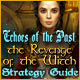 Echoes of the Past: The Revenge of the Witch Strategy Guide