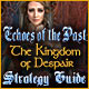 Echoes of the Past: The Kingdom of Despair Strategy Guide