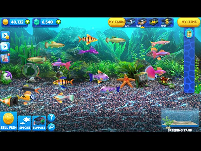 Fish tycoon 2 virtual aquarium ipad iphone android for Pet fish games