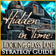 Hidden in Time: Looking-glass Lane Strategy Guide