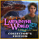 Download Labyrinths of the World: A Dangerous Game Collector's Edition from Big Fish Games