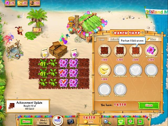 Big Fish Games Decorate Tropical Island
