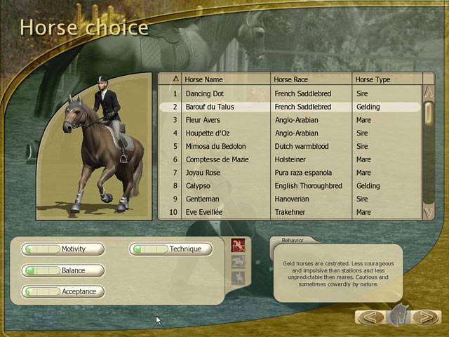 Horse Games For Mac