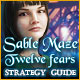 Sable Maze: Twelve Fears Strategy Guide