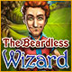 The Beardless Wizard