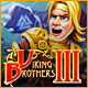 Download Viking Brothers 3 from Big Fish Games
