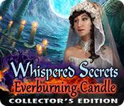 低声说的秘密:Everburning蜡烛集 s版