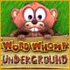 Word Whomp  Underground game