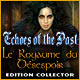 Echoes of the Past: Le Royaume du Désespoir Edition Collector