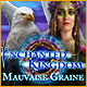 Enchanted Kingdom: Mauvaise Graine