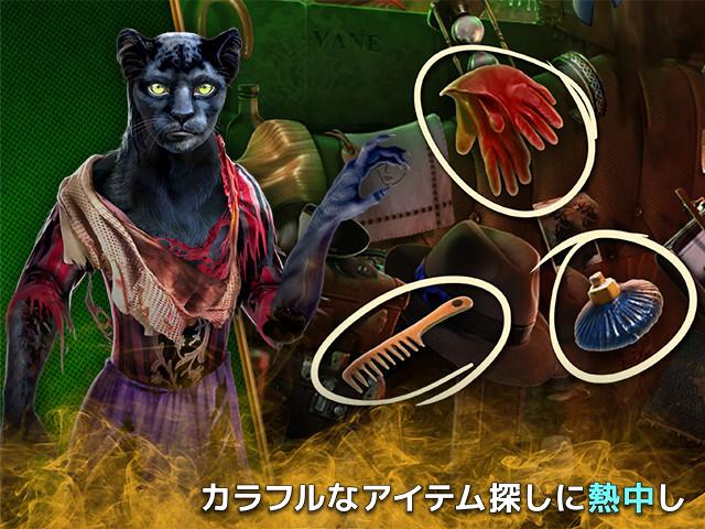 ダーク・ロマンス:秘められた怪物 コレクターズ・エディションの画像