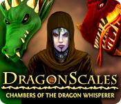 ドラゴンの鱗:ドラゴントレーナーの部屋