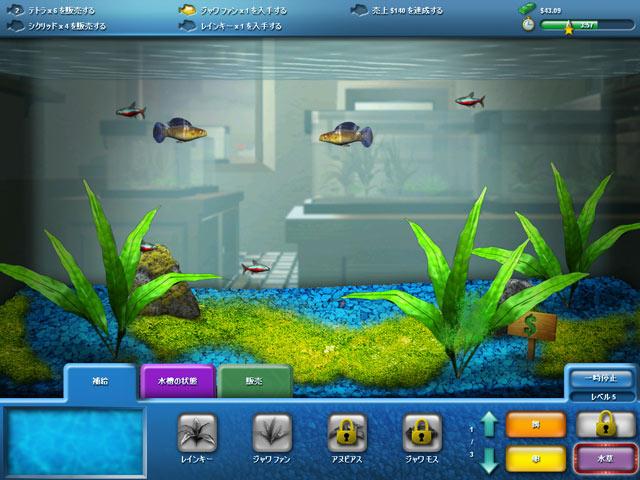 FishCoの動画