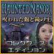 ホーンテッド マナー:呪われた館と鏡の王 コレクターズ・エディション