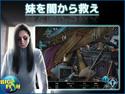 シャドウプレイ:闇の化身 コレクターズ・エディションの画像