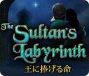 スルタンズ ラビリンス:王に捧げる命