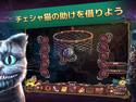 サーフェス:失われた物語 コレクターズ・エディションの画像